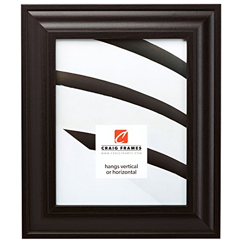 Craig Frames 76036 24 by 36-Inch Picture Frame, Smooth Wood