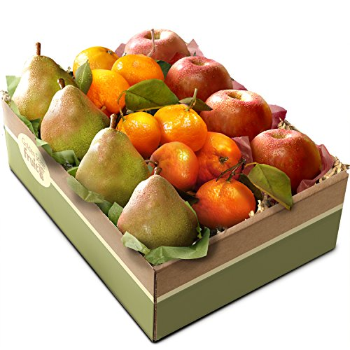 Golden State Fruit California Trio Fruit Gift Box (David And Harry Gift Baskets)