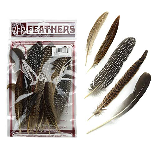 ZUCKER Assorted Natural Guinea and Pheasant Feathers - Multiple Pheasant Tail, Goose and Guinea Feathers for Fly Tying, Home Decor and Craft Supplies - 20pc - 4-10 inch