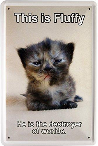 Cartel de Chapa Gato This is Fluffy Cats 20 x 30 cm Diseño ...
