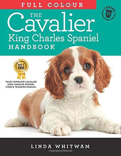 The Full Colour Cavalier King Charles Spaniel