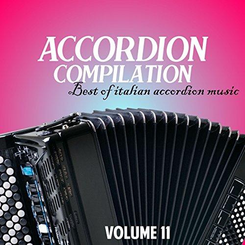 italian accordion - 1