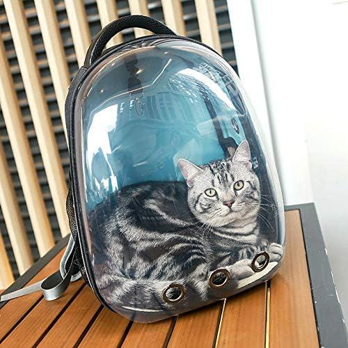 lipanpan Cat Bag out Portable Cat Backpack Box Bag Cat Cage Dog Bag Transparent Shoulder Cat Space Capsule Pet Bag: Amazon.es: Deportes y aire libre