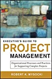 Executive's Guide to Project Management: Organizational Processes and Practices for Supporting Compl