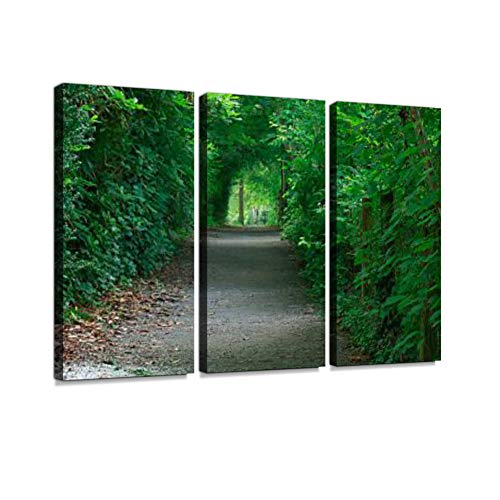 Secret Garden Path Print On Canvas Wall Artwork Modern Photography Home Decor Unique Pattern Stretched and Framed 3 Piece