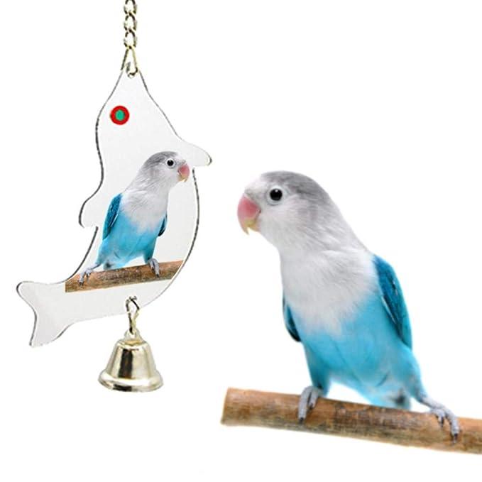 SUPERLOVE Columpio de pájaro Juguetes Juguete Muy Resistentes para ...