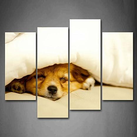 Amarillo Perro dormir en cama Coverd por colcha de pared Art PINTURA la imagen impresión sobre