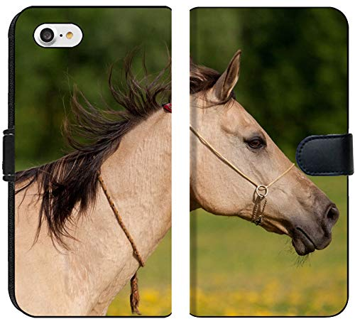 Horses Horse Teke Akhal - Apple iPhone 7 and iPhone 8 Flip Fabric Wallet Case Image ID 20856450 Portrait of a Beautiful Akhal Teke Horse
