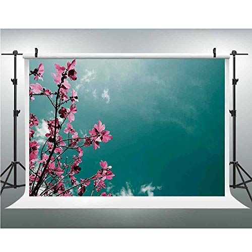 Backdrops Photography Floral Silk Photography Backdrop for StudioProp Photo Background Fig Tree Florets with Sunny Sky Exotic Summer Spring Plants Scenic Nature View Backdrop 118