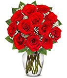 From You Flowers - One Dozen Long Stemmed Red Roses (Free Vase Included)