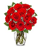 Flowers - One Dozen Long Stemmed Red Roses