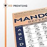 Mandolin Chord Chart Laminated Popular
