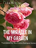 The Miracle In My Garden