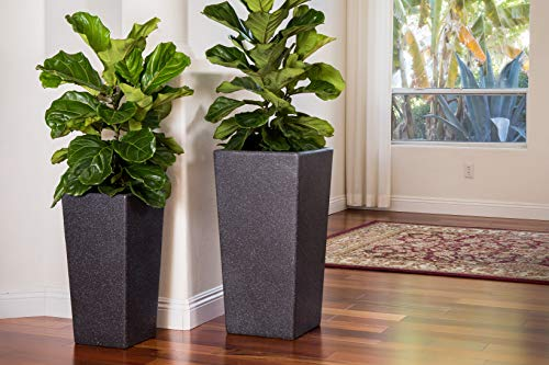 (Canary Products PL2915BK Xbrand Modern Nested Black Square Flower, Set of 2 Different Sizes, 29 Inch & 24 Inch Tall Pot Planter, 29''&24')