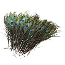 """SODIAL(R) 100 Pcs Peacock Feathers 10""""-12"""""""