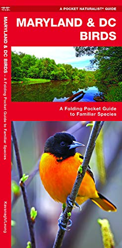 Maryland & DC Birds: A Folding Pocket Guide to Familiar Species (Wildlife and Nature ()