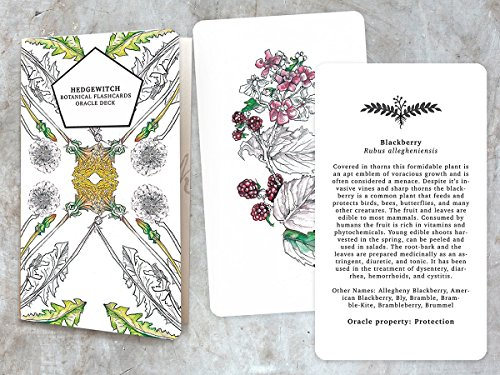 hedgewitch-botanical-flashcards-oracle-deck