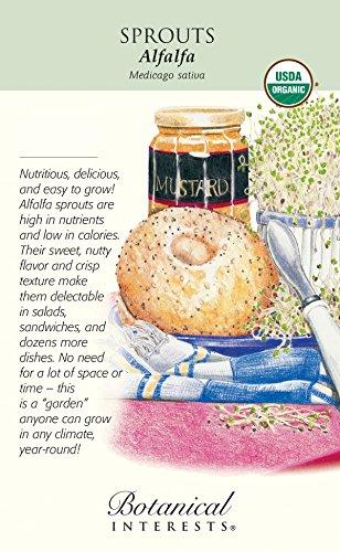 Organic Alfalfa Sprouting Seeds - 30 grams - Botanical Interests