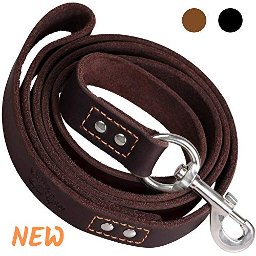 ADITYNA - Heavy Duty Leather Dog Leash 6 Foot - Strong and Soft Leather Leash for Extra Large, Large and Medium Dogs - Dog Training Leash (XL - 6 ft x 1 inch, Brown) ()