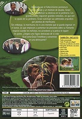 El Jardin De La Alegria [DVD]: Amazon.es: Craig Ferguson, Tcheky Karyo, Martin Clunes, Brenda Blethyn, Varios, Nigel Cole, Craig Ferguson, Tcheky Karyo: Cine y Series TV