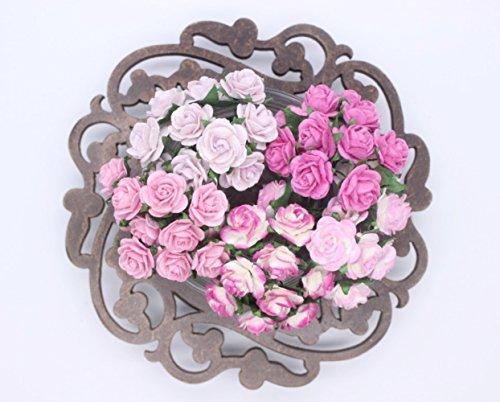 100 Pcs Mini Rose Mix Sweet Pink 10 mm Mulberry Paper Flowers Scrapbooking Wedding (Watt Mini Guitar)