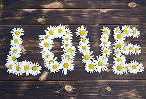 Leyiyi Blooming Chrysanthemum Backdrop 5x3ft Photography Background Love Theme Valentine's Day Nostalgic Texture Plank Wild Chrysanthemum Room Decoration Party Kids Adults Photo Props