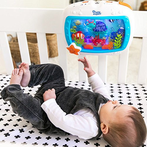 Large Product Image of Baby Einstein Sea Dreams Soother