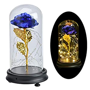 Agyvvt Artificial 24K Rose Flower LED Light String in Glass Dome on a Wooden Base Gift for Her Holiday Birthday Party Wedding Anniversary Valentine's Day 98