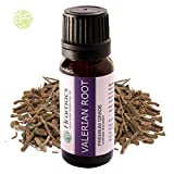 Valerian Root Oil - Pure And Natural Essential Oil 10 ML