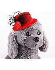 Qazwsxedc para Mascotas Caballero del Sombrero CII Europea de Mascotas Sombreros Sombrero (Rojo) (Color : Red)