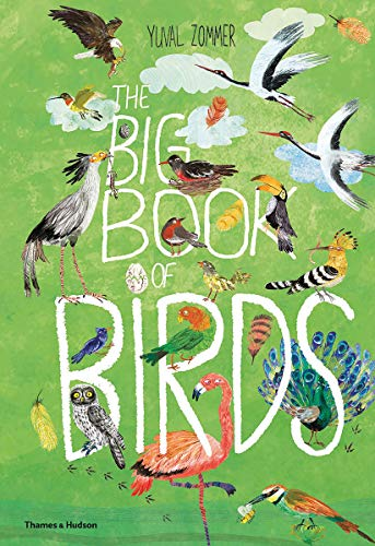 Image of The Big Book of Birds