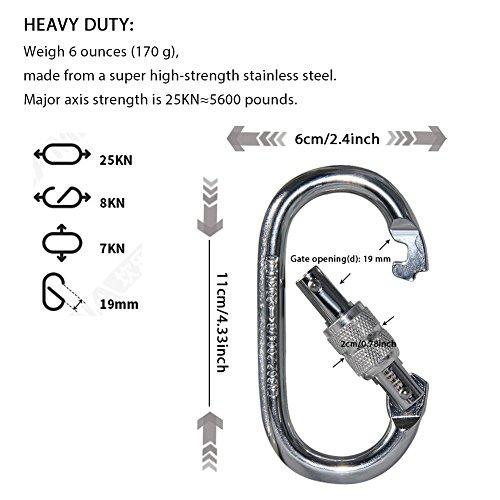 KABB 2 Pcs Climbing Carabiner, 25 Kn O Shaped Super Strength Steel Screw Locking Carabiners for Hammock Rock Climbing Hiking Yoga (Silvery)