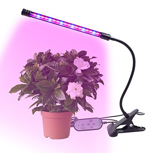 seed growing timer - 9