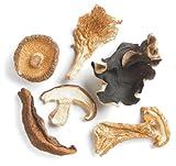 Forest Blend Mushrooms, 1 Lb Bag