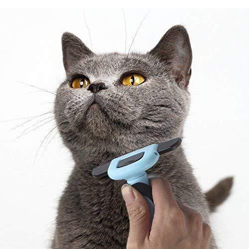 VOYAGO Pet Tipo de Pelo Cepillo de gestión efectiva de Cuidado Herramientas para Gatos, Perros con Corto, mittellangem Pelaje y Reduce Pelo Caseta para ...