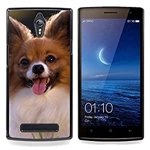 Ihec Tech Papillon Chihuahua peque?o perro canina / Funda Case back Cover guard / for OPPO Find 7 X9077 X9007