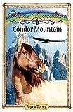Condor Mountain, Angela Dorsey, 0987684809