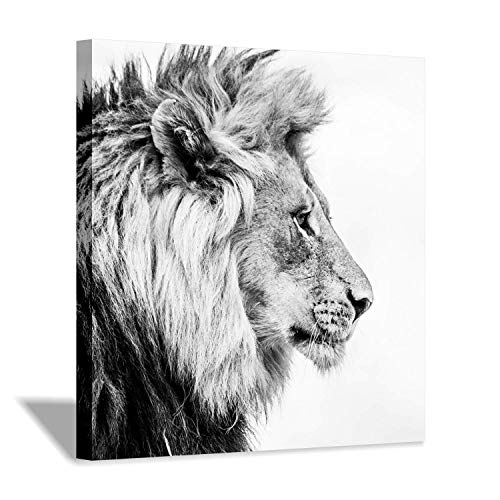 (Hardy Gallery Lion Art Wall Decor Picture: Wildlife Portrait Graphic Artwork Print Painting on Wrapped Canvas (24''x24''))