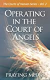 Operating in the Court of Angels (The Courts of Heaven) (Volume 2)