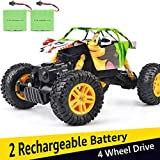DOUBLE E RC Cars 1:18 Dual Motors Rechargeable Remote Control Truck 4WD Off Road RC Truck Rock...