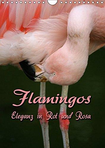 Flamingos - Eleganz in Rot und Rosa (Wandkalender 2018 DIN A4 hoch): Auf Augenhöhe mit Flamingos (Monatskalender, 14 Seiten ) (CALVENDO Tiere) [Kalender] [Apr 01, 2017] Berg, Martina