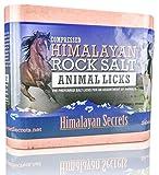 11 LB Compressed Himalayan Salt Lick for
