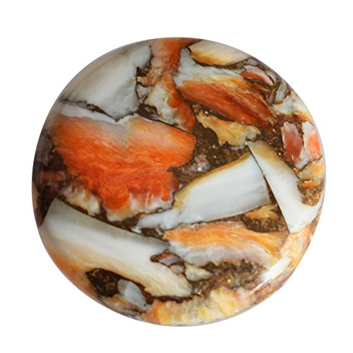 26 Carat Natural Orange Spiny Oyster Shell Cabochon, Jewellery Making, Round Shape, Wholesale Price AG-8756
