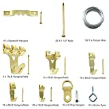 Heavy Duty Photo Frame Hooks, 220 Pieces Ultimate Picture Hanging Kit Picture Hanger Assortment Tool for Wall Mounting