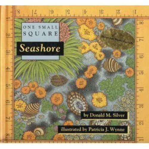 Seashore Handle One - Seashore (One Small Square) by Silver, Donald M. (1993) Hardcover
