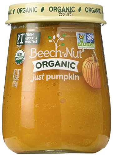 Beech-Nut Organic Just Pumpkin Stage 1 Baby Food, 4.25 Ounce (Pack of 10) (Pumpkin One)