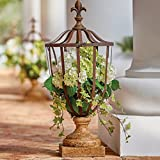 Cage Urn Planter