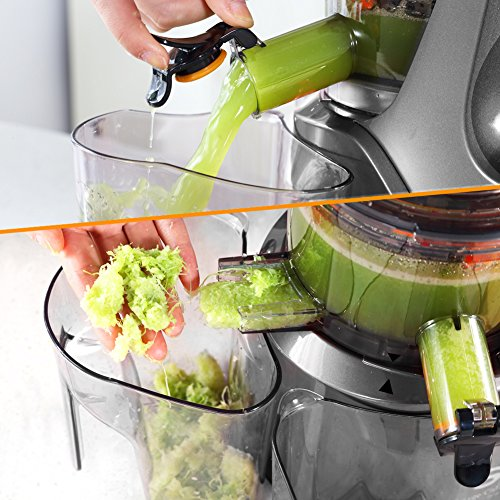 SKG Wide Chute Anti-Oxidation Slow Masticating Juicer (240W AC - Import It All