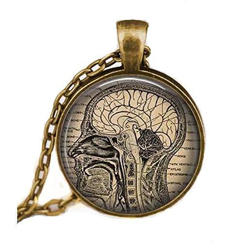 ON SALE Anatomical brain necklace,human brain anatomy pendant , neurologist gift necklace, biology , medical student gift,neurology pendant