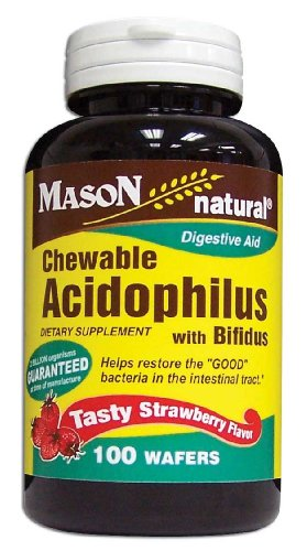 Mason Vitamins Acidophilus with Bifidus Strawberry Wafers, 100-Count Bottles (Pack of 3)